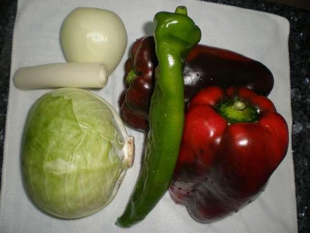 wcqy - Fajitas de pollo y verdura