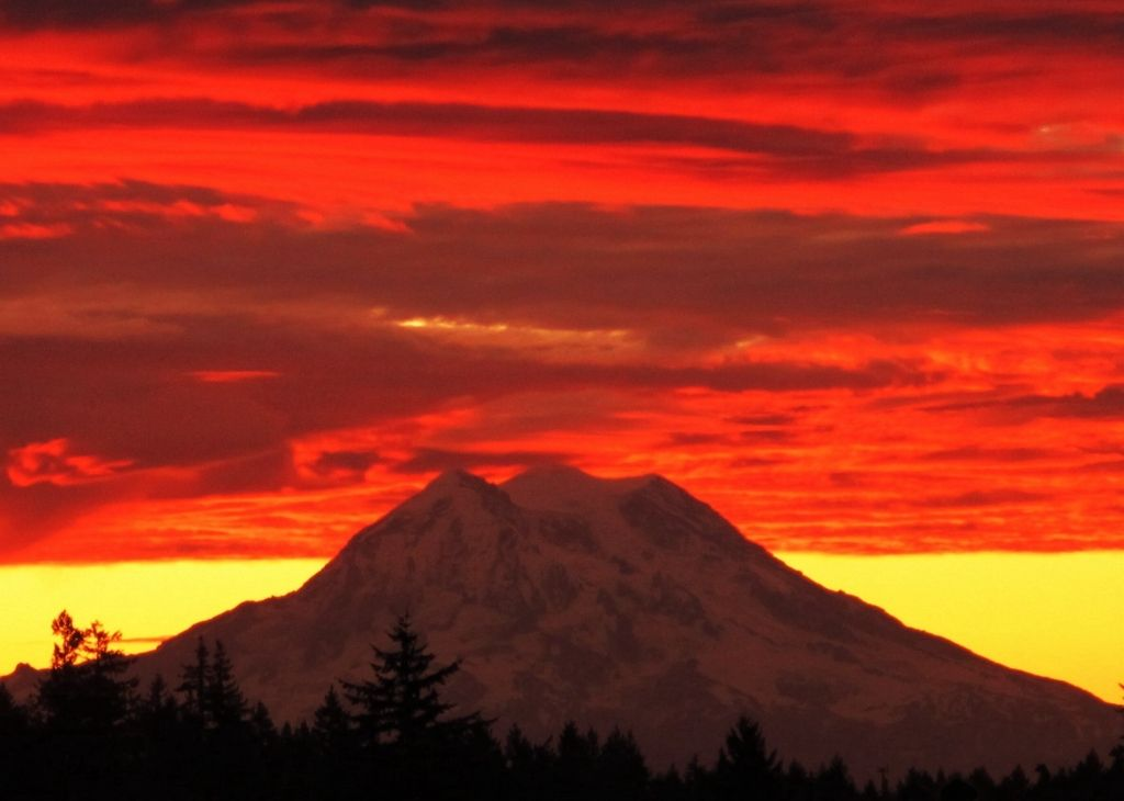 Mount Rainier Glows At Sun Rise   Amazing Mountain Images